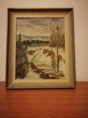 Tablou pictura ulei pe carton artist necunoscut nordic, semnat, 37x31 cm foto