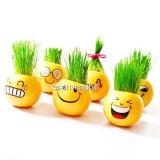 Jucarie Educativa si Decorativa cu par din Gazon Cap de Iarba Smiley