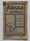 Biblioteca Agricola A Ziarului Universul - Ciuperci Bune De Mancat - 1935