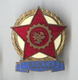 Insigna  1970 Fruntas al Cooperativei de Productie - Romania RSR - Ceausescu