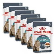 Royal Canin HAIRBALL CARE - pliculeț 6 x 85g