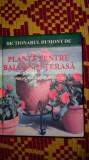 Plante pentru balcon si terasa 302pagini/ilustratii