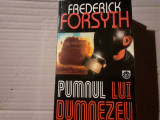 PUMNUL LUI DUMNEZEU - FREDERICK FORSYTH, ED RAO  1998, 699 PAG