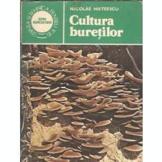 Cultura buretilor - Nicolae Mateescu