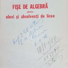 Fise de algebra pentru elevi si absolventi de licee (1976)