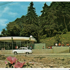 CPI B 11653 CARTE POSTALA - SANGEORZ BAI. IZVORUL NR.7, AUTOTURISM, Circulata, Fotografie
