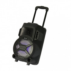 Boxa Portabila 100W PMPO Tip Troler, ZQS-8101 cu Microfon, Bluetooth, Radio FM