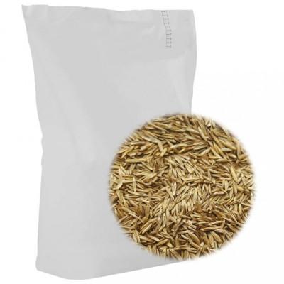 Semințe pentru iarbă de gazon, 5 kg foto