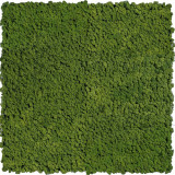 Gradini verticale licheni conservati ARTFLORA GreenForest 0.25mp