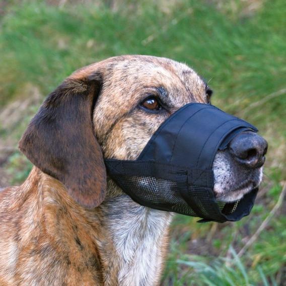 Botniță pentru câini – confecționată din plasă, mărimea 3