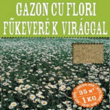 Seminte Gazon cu Flori , flori Bellis Perennis
