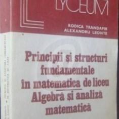 Principii si structuri fundamentale in matematica. Algebra si analiza matematica