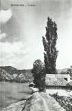 AMS# - VEDERE ADA-KALEH - VEDERE NECIRCULATA,alb-negru, Fotografie, Europa