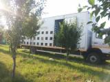 Camion pentru albine
