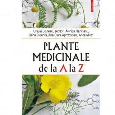 Plante medicinale de la A la Z - Ursula Stanescu (editor), Monica Hancianu, Oana Cioanca, Ana Clara Aprotosoaie, Anca Miron