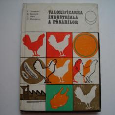 Valorificarea industriala a pasarilor - I.Cironeanu, B.Dobinda, C.Banu