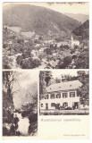 5187 - RUSCA MONTANA, Caras Severin, Romania - old postcard - used - 1909