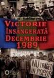 Victorie insangerata Decembrie 1989/Constantin Corneanu, Cetatea de Scaun
