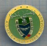 AX 169 INSIGNA VANATOARE SI PESCUIT SPORTIV PERIOADA RSR -A.G.V.P.S -1948-1988