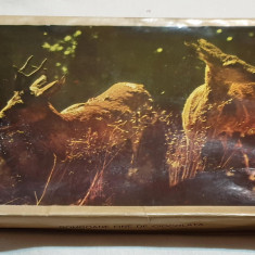 Cutie veche comunista de colectie Bomboane fine de ciocolata 1963 imagine Cerb