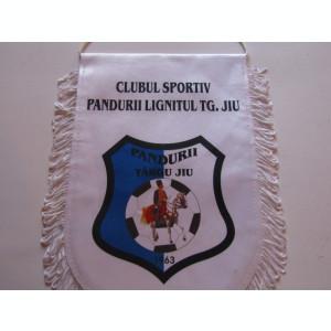 Fanion fotbal - PANDURII TARGU-JIU