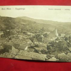 Ilustrata Baia Mare - Vedere Generala , anii '20, Necirculata, Printata