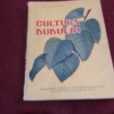 E CRAICIU - CULTURA DUDULUI 1958