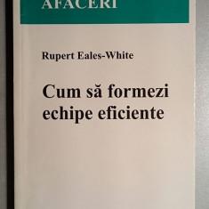 Cum sa formezi echipe eficiente - Rupert Eales-White