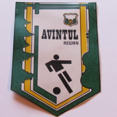 Fanion fotbal - Avantul Reghin