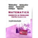Matematica - Exercitii si probleme pentru clasa a X-a. Profilul Tehnologic - Virgiliu Schneider, Clasa 10, Auxiliare scolare
