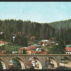 BORSEC – VEDERE GENERALA - CP CIRCULATA #colectosfera