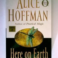 Alice Hoffman - Here On Earth