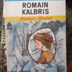 Romain Kalbris – Hector Malot, Biblioteca pentru toti copiii
