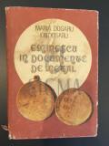 EMINESCU IN DOCUMENTE DE METAL - MARIA DOGARU