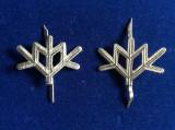 Insigne militare -Insigne România- Semne de armă - Vanatori de Munte (argintii)