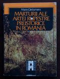 Marin Cârciumaru - Mărturii ale artei rupestre preistorice în România