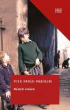Băieții străzii (Colecția Clasici moderni)