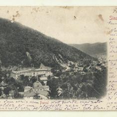 cp Sinaia : Parcul - UPU, circulata 1903, timbru