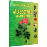 Atlas botanic elementar - Gabriela Corina Kodzabasija(Vox)