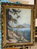 Pictura peisaj ( ulei pe carton ), Natura, Realism