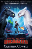 How to Train Your Dragon FILM TIE IN (3RD EDITION) Book 1