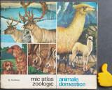 Mic atlas zoologic Animale domestice  N. Saftoiu