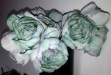 Buchet flori artificiale - Ranunculus 5 fire turquoise  pal , înălțime 27  cm