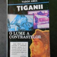 TUDOR AMZA - TIGANII * O LUME A CONTRASTELOR