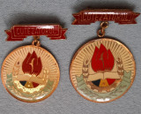 2 Insigne pionieri Cutezatorul - variante - titlu - distinctie - medalie