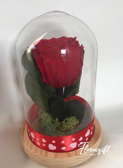 Trandafir criogenat rosu- Valentine