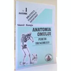 ANATOMIA OMULUI, PERETII TRUNCHIULUI DE VIOREL RANGA