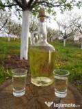 Rachiu/Tuica din vin 11 lei, Vin A/N 5.5 lei, Struguri(4 soiuri) 1.8 lei/kg
