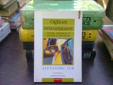 Oglinzi retrovizoare. Alexandru Zub in dialog cu Sorin Antohi, Polirom