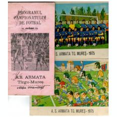 ASA Targu Mures - echipa 1975, program 1986-87